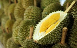 Malaysia – Tapping on China's Big Demand for our Durians