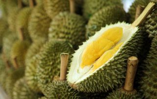 Durian Prices Surge as Demand Increases in China
