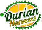 Durian Harvests – Musang King Durian Investments Logo