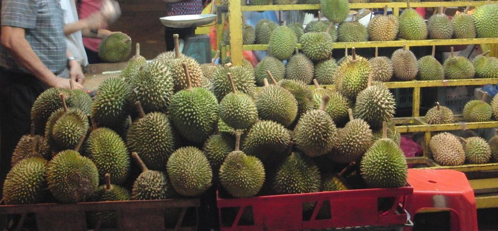 Durian Archives - Durian Harvests - Home of the Musang King